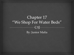 Chapter 17 *We Shop For Water Beds*