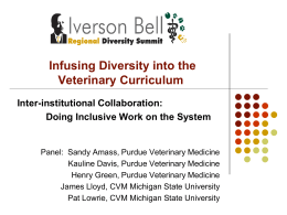 The Iverson Bell Summit on Curricular Inclusion