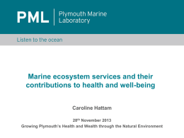 Marine ecosystem services: contributions to well
