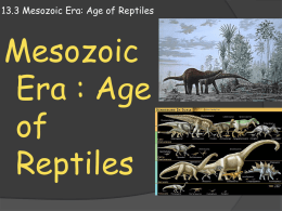 13.3 Mesozoic Era: Age of Reptiles
