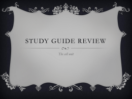 Study Guide Review