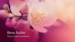 Reva Rubin - Directory of WordPress Sites