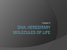 DNA: Hereditary Molecules of Life