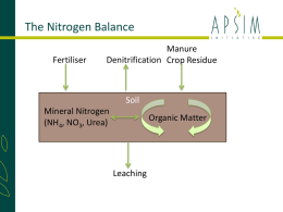 The APSIM Nitrogen Balance