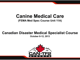 Canine Medical Care