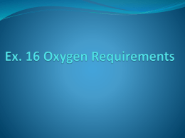 Ex. 16 Oxygen Requirements