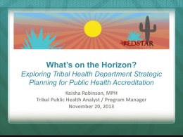 Exploring Tribal Health Department Strategic Planning for Public