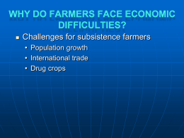 Why Do Farmers Face Economic Difficulties? Agricultural Land and