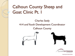 Calhoun County Sheep and Goat Presentation 1