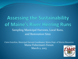 Assessing the Sustainability of Maine`s River Herring Runs