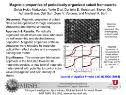Magnetic properties of periodically organized cobalt frameworks