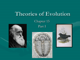 theories of evolution, ch 15 part 1
