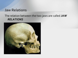 Jaw Relations – Copy