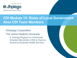 Roles of Local Government CDI Team Members