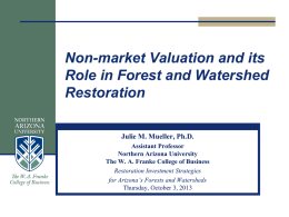 What is Non-market valuation?
