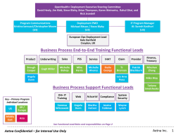 Business Process Support Functional Leads