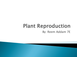 Plant Reproduction for science