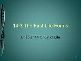 14-3 The First Life Forms