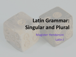 Latin Grammar: Singular and Plural