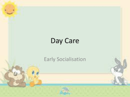 Day Care - Higher Psychology
