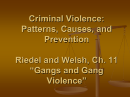 Chapter 11 Powerpoint (2) Gangs