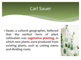 The diffusion of both vegetative planting and seed agriculture from