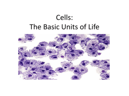 Cells: The Basic Units of Life