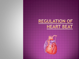 Regulation of heart beat