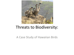 Threats to Biodiversity: