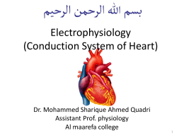 electrophysiology of heart