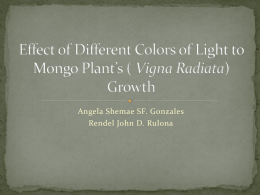 Effects of Different Colors of Light to Mongo`s Growth - ids