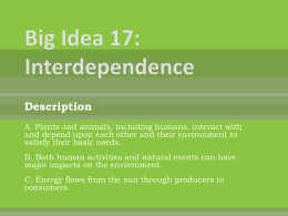 Big Idea 17 : Interdependence