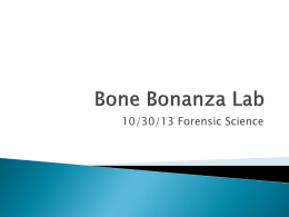 10/30 Bone Bonanza Lab