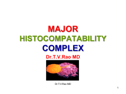 Major Histocompatibility Antigens