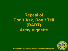 Army DADT Vignette Slides (17 Feb 11)