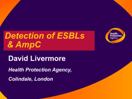 Detection of ESBLs and AmpC beta