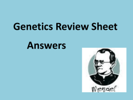 Genetics Review Sheet Answers