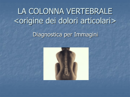 LA COLONNA VERTEBRALE - MULTIMEDICA.CATANIA AGVsrl