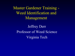 Weed Identification and Management