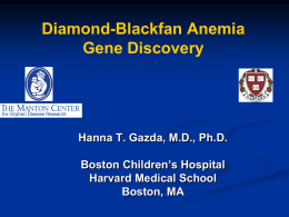 ppt - Diamond Blackfan Anemia Foundation, Inc.
