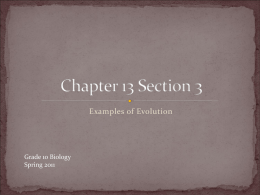 Chapter 13 Section 3