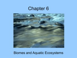 Biome review and Aquatic Ecosystems