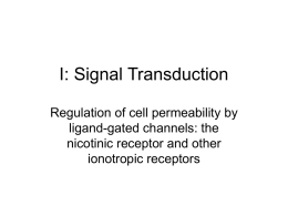 Signal Transduction I