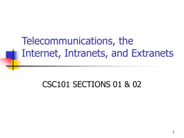 Telecommunications, the Internet, Intranets, and Extranets