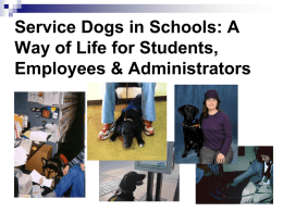 Service Dogs in Schools