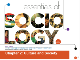 Chapter 2: Culture and Society