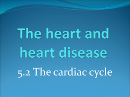 5.2 The cardiac cycle