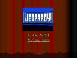 Week 1: Mice and Beans jeopardy