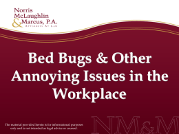 Bed Bugs and Other Annoying Issues in the Workplace