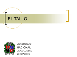 TALLO1 (2) - Docentes.unal.edu.co